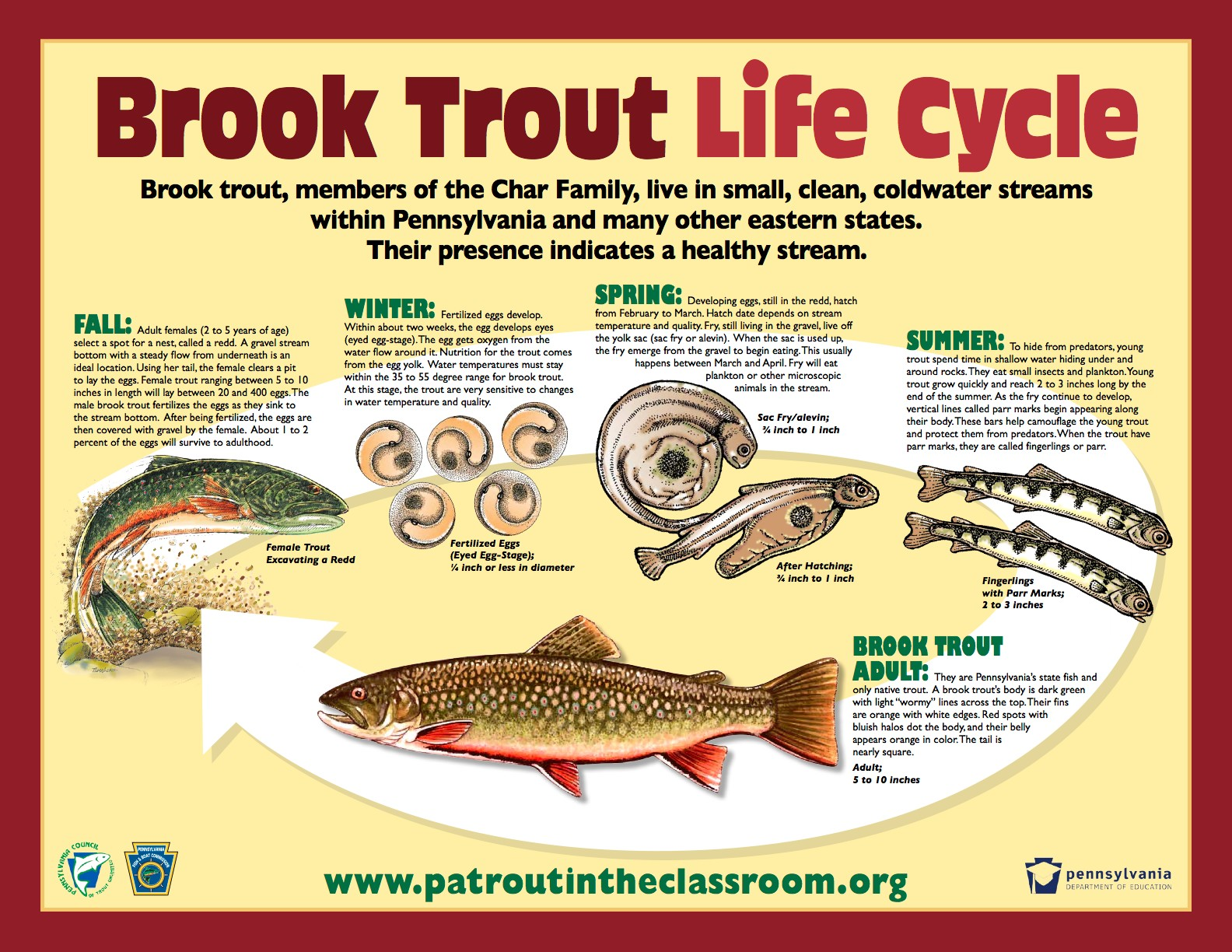 Trout Diagram Inside - Residential Electrical Symbols •